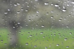 Suggestion d'un cerisier (Michel Seguret Thanks for 15 M views !!!) Tags: water rain agua eau wasser pluie drop windscreen acqua regen goutte