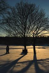 Berthåga kyrkogård 4 (Maria Nystrom) Tags: trees winter sunset canon eos vinter cemetary uppsala träd solnedgång 700d