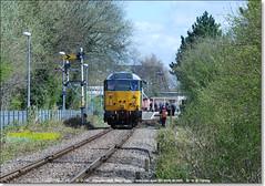 31601 runs-round at Peterborough (Nene Valley), April 11th 2015 b (Bristol RE) Tags: 31 peterborough dcr nvr nenevalley 5609 class31 31601 nenevalleyrailway 31186 d5609 devonandcornwallrailways