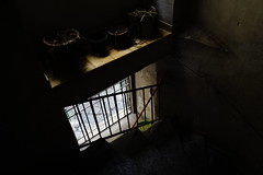 _DSC2324 (Parrasgo) Tags: sunset moon streetart atardecer ventana capri la dock chat harbour paloma movimiento via finestra porto gato blanket musica moto napoli naples moonlight duomo dormir lungomare amalfi nápoles castell vesubio sabana dellovo callejera gaiola spagnoli tribunali viatoledo quartieri serynge girolamini