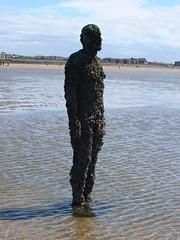 DSCF0666 (SierPinskiA) Tags: sea shells beach liverpool sand ironman pools barnacles ironwork mayday seashore merseyside anthonygormley irishsea 2016 anotherplace crosbybeach blundellsands fujixs1