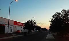Streetlights (Frantastic.) Tags: streetlight streetlights lamppost lampposts farola farolas lluz luz light sunset atardecer anochecer azul blue contrast contraste road carretera camino sidewalk acera pavement tree trees rboles rbol montijo extremadura badajoz spain espaa summer verano paisaje landscape sun clear sol 365 365days car coche color colour colores colours evening noche hot calor heat
