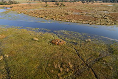 View From Above XI (www.mattprior.co.uk) Tags: adventure adventurer journey explore experience expedition safari africa southafrica botswana zimbabwe zambia overland nature animals lion crocodile zebra buffalo camp sleep elephant giraffe leopard sunrise sunset