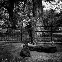 The Musical Dog Whisperer (CVerwaal) Tags: nyc blackandwhite music usa ny newyork centralpark performers themall streetmusicians sonyrx100iii