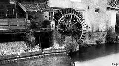 Le Moulin de la Tour (@ugo) Tags: rivière moulin ancien nordpasdecalais pasdecalais parc noir et blanc