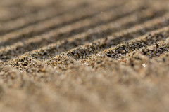 footprint in the sand #FlickrPhotowalk (Marc McDermott) Tags: macro mondays flickrphotowalk textures macrotextures macromondays sand foot print beach