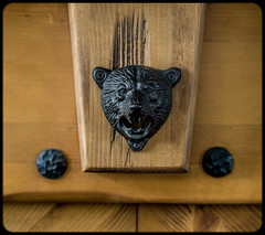 Its a bear bottle opener. (CWhatPhotos) Tags: cwhatphotos black bear beer bottle opener wall mounted wood metal photographs photograph pics pictures pic picture image images foto fotos photography that have which contain animal dof depth field cool