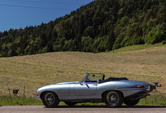 Curves... (NaPCo74) Tags: 6 classic car cab double historic e type jag british jaguar straight coventry six roadster cabriolet etype kx