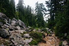 IMG_4189.jpg (Backpacking With Bacon) Tags: washington northerncascades hiking mtpilchuck granitefalls unitedstates us