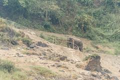 _RJS8171 (rjsnyc2) Tags: richardsilver richardsilverphoto richardsilverphotography nikon nikond810 d810 laos intrepidtravel asia mekong river mekongriver water travel travelphotographer travelphotography