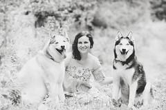 Loves of my life. #husky (Nttnylion) Tags: husky huskies siberianhusky nikon blackandwhite philadelphia pet photographer philadelphiapetphotographer dogphotographer dogs dog wayne furkids furkid doglover