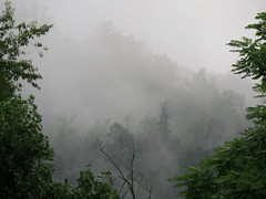 after the rain  Explored 8/5/2016 (Hayseed52) Tags: fog mist storm summer