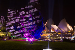 _MG_4874.jpg (Tibor Kovacs) Tags: night colours tree vivid australia events sydney sydneyoperahouse projections light