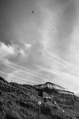 Biarritz, Cte des Basques. (Jrme Cousin) Tags: bw white black monochrome plane nikon noir nb des 64 28 cote monochrom tamron et blanc euskadi bayonne biarritz pyrenees avion bab euskal herria atlantiques basques 2470 anglet herri d700