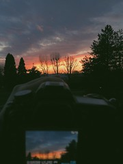 sunset shooting (graepelisa) Tags: camera trees sunset italy amazing nikon colours rooftops shooting iphone5s vscocam
