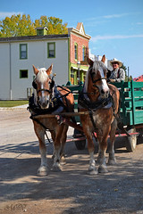 wagon ride at your service (~ Mariana ~) Tags: friends sky calgary nature nikon alberta mariana heritagepark horsedrawnwagon travelsofhomerodyssey outstandingromanianphotographers marculescueugendreamsoflightportal