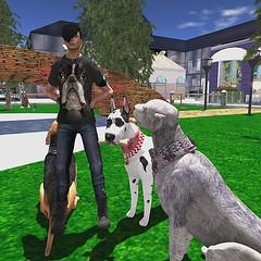 Dog Maniac (Wredziaa & Fabian50000pl) Tags: dog hair necklace outfit fb avatar watch free clothes gift marketplace bffashion atropatena vipscreations