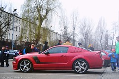 Roush Mustang 427R (Mateusz Woek) Tags: boss cars ford chevrolet car focus nissan parking fast 7 camaro 427 bmw premiere mustang gt a4 audi katowice lamborghini rs avant 44 furious 302 gallardo punkt kato gtr nismo roush premiera fastfurious szybcy wciekli