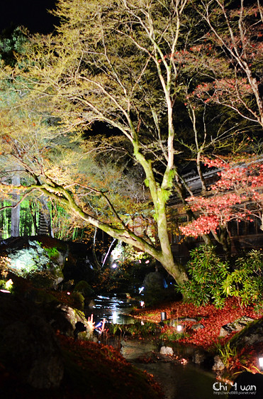 嵐山寶嚴14.jpg