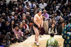 Sumo in Osaka-48 (Rodrigo Ramirez Photography) Tags: japan amazing traditional professional tournament osaka sumo yokozuna ozeki makuuchi hakuho sumotori sumotournament maegashira reikishi harumafuji topdivision