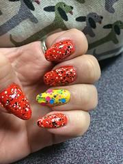 76/365 (scaredsquee) Tags: orange mani nails manicure nailpolish 76 orangenails 76365 opinailpolish march365 accentnail opineedsunglasses matteglitter opimanicure march2015 opiarollinthehague