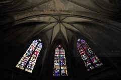 And more (Elios.k) Tags: camera travel windows light france color colour travelling tourism church window glass horizontal canon dark french photography colorful catholic arch cathedral roman interior religion gothic belief style chapel nopeople ceiling stained altar indoors master april lorraine renaissance metz apse 2015 5dmkii valentinbousch sainttiennedemetz lalanternedubondieu saintstephenofmetz