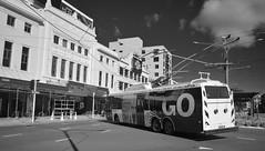 Kent Terrace (andrewsurgenor) Tags: bus buses electric transport transit nz wellington publictransport streetscenes trolleybus trolleybuses trackless nzbus gowellington
