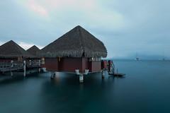 Tahiti - Frenche Polynesia (waex99) Tags: voyage travel family sea mer easter french island polynesia hotel nikon ile auckland april tahiti moai isla bungalow intercontinental newzeland moorea rapanui pasqua papeete paques nui 2015 polynesie d700 chilerapa