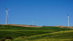 Green power (andbog) Tags: panorama espaa primavera nature field landscape countryside spring spain stitch widescreen sony country hill natura andalucia hills energaelica campagna espana ronda campo es alpha sonya andalusia sel 169 paesaggio spagna mlaga colline csc windpower oss 16x9 windturbines greenpower elico parqueelico ilce eolian eolico energiaeolica sonyalpha paleeoliche mirrorless 1650mm a6000 sony sweeppanorama emount turbineeoliche selp1650 sonyalpha6000 ilce6000 sonya6000 sonyilce6000 sony6000 6000