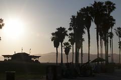 @IMG_4514 (bruce hull) Tags: sanfrancisco california aquarium coast highway chinatown pacific wharf whales coit emabacadero