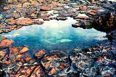 Tidepool (gpot97) Tags: tidepool pool water blue rocks analog film kodak 2254 canon ae1 natural nature landscape rocky shoreline palos verdes reserve
