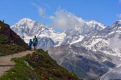 Hiking on the Alps (giorgiorodano46) Tags: luglio2016 july 2016 giorgiorodano nikon alps alpes alpi alpen ortlescevedale altoadige italy sudtirolo zebr hiking sentiero track marco mattia
