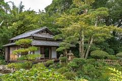 Tenshaen Garden, Uwajima, Ehime, JAPAN (Hiro_A) Tags: uwajima ehime shikoku japan japanesque japanesestyle garden date historical sightseeing sigma 1770mm 1770 nikon d7200