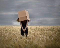 Boxed In (Patty Maher) Tags: box boxedin field conceptual conceptualphotography surreal fineartphotography