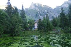 IMGP7614 (Alvier) Tags: schweiz ostschweiz kantonstgallen seeztal berschis sennis hotelkurhaussennisalp wanderung alviergebiet weiher