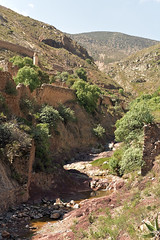 DSC_6801 (Pablo de Gorrion) Tags: real de 14 mexico 2016 nikon slp san luis potosi vagonsky montekristum pablo gorrion