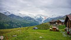 Meiden (brutus_ch) Tags: ralfmaurer alpen outdoor wallis turtmanntal schweiz switzerland explore