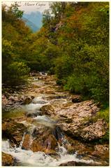 Piccole cascate in Val Vertova (BG) (mauro.cagna) Tags: nikon sigma art cascate serio vertova val seriana acqua