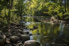 Pequannock River_4881 (smack53) Tags: smack53 river water rocks trees riverdale newjersey stream autumn nikon d300 nikond300 landscape outdoors outside