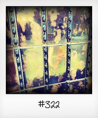"""#DailyPolaroid of 15-8-16 #322 • <a style=""""font-size:0.8em;"""" href=""""http://www.flickr.com/photos/47939785@N05/29681964405/"""" target=""""_blank"""">View on Flickr</a>"""