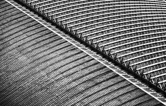 St Pancras Station Roof (jarvis777) Tags: architecture blackwhite architectual london roof lines contrast abstract pattern kings cross pancras station