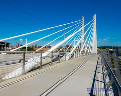 Tilikum Crossing in the Sun (AvgeekJoe) Tags: bridgeofthepeople d5300 dslr nikon nikond5300 oregon portland tilikumcrossing tilikumcrossingbridgeofthepeople willametteriver bridge cablestayedbridge transitbridge
