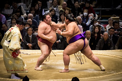 Sumo in Osaka-11 (Rodrigo Ramirez Photography) Tags: japan amazing traditional professional tournament osaka sumo yokozuna ozeki makuuchi hakuho sumotori sumotournament maegashira reikishi harumafuji topdivision