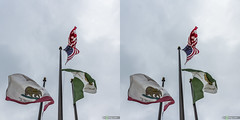flags in front of the Coronado Police Station, San Diego, CA, USA (urix5) Tags: california sky usa station stereoscopic 3d crosseyed san unitedstates flag police diego flags stereo stereopair coronado department stereoscopy crossview