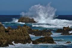 April15PG0069 (Michael T. Morales) Tags: waves pacificgrove ptpinos