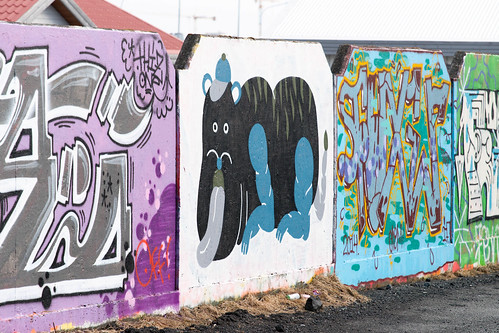 Iceland 2015 - Reykjavik - Street Art - 20150321 - DSC06934.jpg