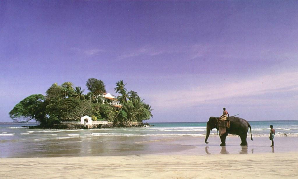 5Để du lịch Sri Lanka, Bạn chỉ cần nộp đơn xin visa qua mạng, thanh toán bằng thẻ ngân hàng và đợi có kết quả