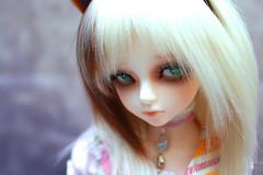 (14) (Tepsia_) Tags: doll bjd luts abjd bory balljointeddoll kdf dollphotography kiddelf asianballjointeddoll dollphoto lutskiddelf lutsdoll borygirl   lutsbory