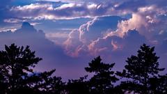 Wish You Were Here (DJawZ) Tags: pine barrens nj clouds sky light trees storm
