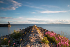 Summer Evening At The Coast (State of Decay) Tags: longexposure sea summer water coast waterfront sweden sverige zweden waterscape gvleborg hlick